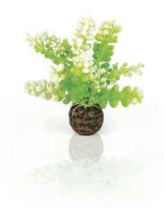 Oase Akváriová dekorácia biOrb Aquatic Caulerpa green