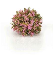 Oase Akváriová dekorácia biOrb Flower ball pink