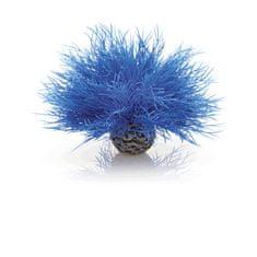Oase Trs vodní trávy modrý