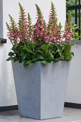 STEWART korito za cvijeće BETON CONIC, 40x40 cm