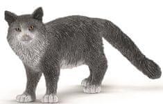 Schleich Maine Coon mačka