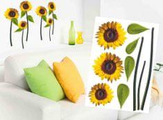Dimex Dekoračné nálepky na stenu Slnečnice - 50 x 70 cm