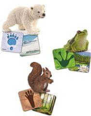 Schleich obrazovne kartice Wild life Schleich