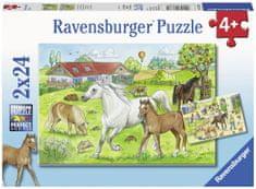 Ravensburger Az istálló 2x24 darab