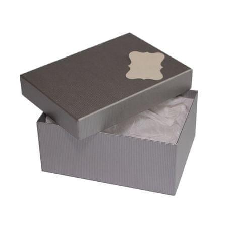 Giftisimo Dárková krabice se jmenovkou a hedvábným papírem - Hana, stříbrná