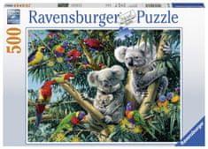 Ravensburger Koaly na stromě 500 dílků
