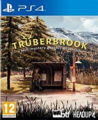 Merge Games igra Trüberbrook (PS4)