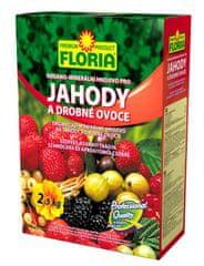 AGRO CS Floria jahody a iné drobné ovocie