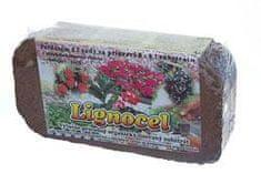 Floraservis Lignocel