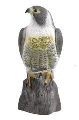 Qenerika Maketa sokola na plašenie holubov a vtákov