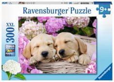 Ravensburger sestavljanka Prikupni psi v košarici, 300 delov
