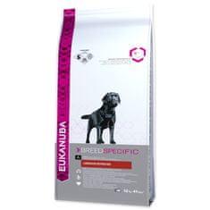 Eukanuba hrana za pse Labrador Retriever (labradorec), 12 kg