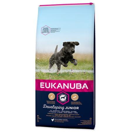 Eukanuba hrana za pse Junior Large, 15 kg