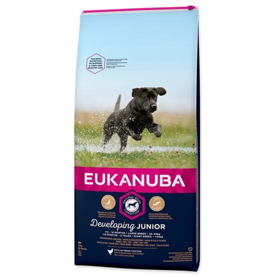 Eukanuba Junior Large 15 kg