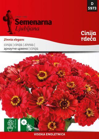 Semenarna Ljubljana cinija, rdeča, 5973, mala vrečka