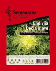 Semenarna Ljubljana endivija, dečja glava, 50 g