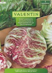 Valentin radič Variegata Di Castelfranco, 419