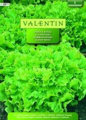 Valentin endivija Bionda a Cuore Pieno, 430