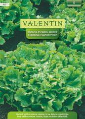 Valentin endivija Escariol Gruner, 432