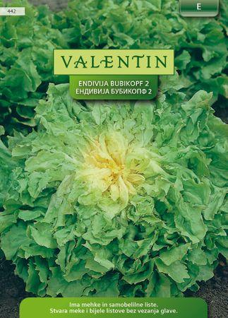 Valentin endivija Dečja glava, 442