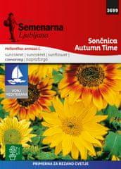 Semenarna Ljubljana sončnica Autumn Time, 3699 Mediteran, mala vrečka