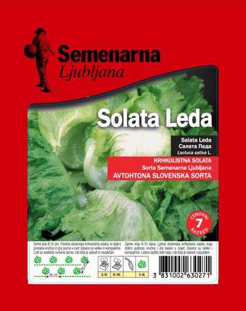 Semenarna Ljubljana salata Leda, 50 g