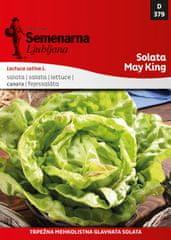 Semenarna Ljubljana salata May King, 379, mala vrećica