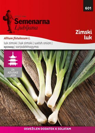 Semenarna Ljubljana čebula M.V. Azija 601 Stoletna (Zimaski luk)