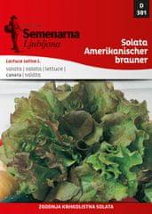 Semenarna Ljubljana salata Amerikanischer brauner 381, mala vrećica