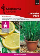 Semenarna Ljubljana limonska trava M.V.Azija 3831 Lemon grass