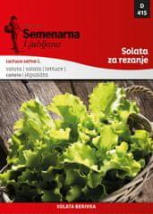 Semenarna Ljubljana salata Berivka, 415, mala vrećica