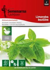 Semenarna Ljubljana limonska bazilika M.V.Herbs 1081