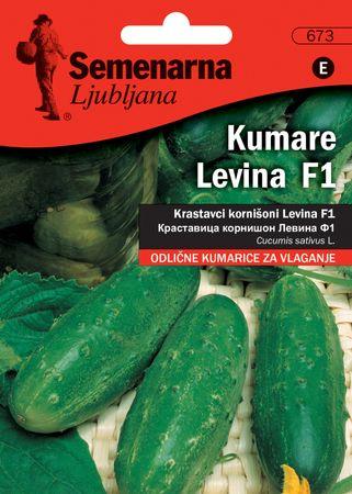 Semenarna Ljubljana krastavci za kiseljenje Levina F1, 673, mala vrećica