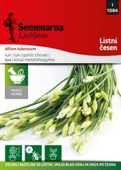 Semenarna Ljubljana kitajski drobnjak - listni česen M.V.Herbs 1084