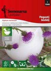 Semenarna Ljubljana pegasti badelj M.V. Herbs 1088