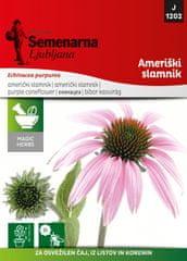 Semenarna Ljubljana ameriški slamnik M.V. Herbs 1202