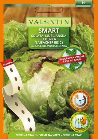 Valentin Smart seme na traku, solata Laibacher Eis 3