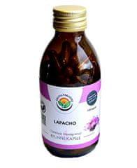 Salvia Paradise Lapacho kôra kapsule