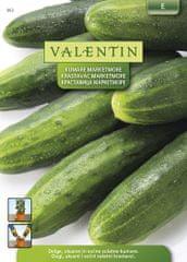 Valentin kumare Marketmore 662