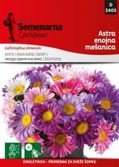 Semenarna Ljubljana Astra enojna - mešanica D2405, mala vrečka