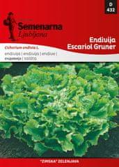 Semenarna Ljubljana endivija Escariol Gruner, 432, mala vrečka
