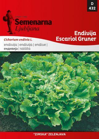 Semenarna Ljubljana endivija Escariol Gruner, 432, malo pakiranje