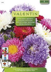 Valentin astra, nizka mešanica, 2402