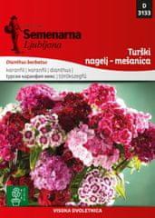 Semenarna Ljubljana Turški nagelj - mešanica D3133, mala vrečka