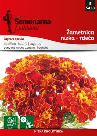 Semenarna Ljubljana žametnica nizka - rdeča D5438, mala vrečka
