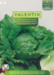 Valentin solata Dalmatinska ledenka, 361
