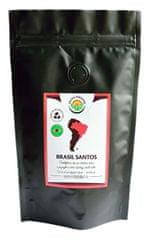 Salvia Paradise Káva - Brasil Santos