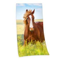 Herding brisača Konj