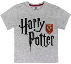 Disney dětské tričko Harry Potter