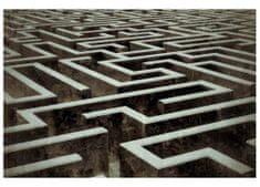 Dimex Fototapeta MS-5-0279 Labyrint 375 x 250 cm